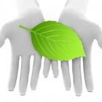 Wordpressのバックアップを確実に!実践・成功した3つの方法を紹介