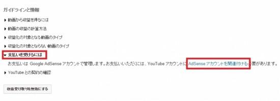 youtubead3